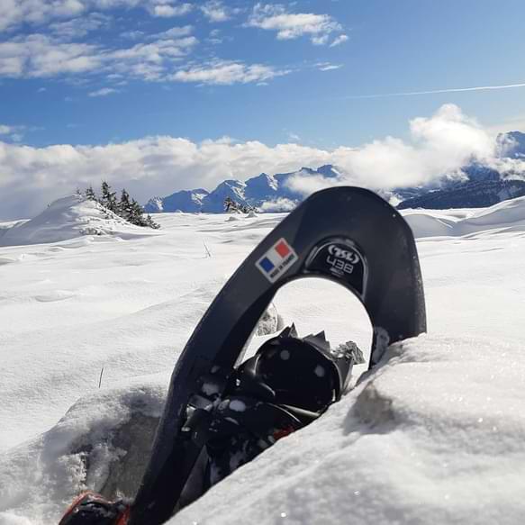 sortie raquette à neige tsl