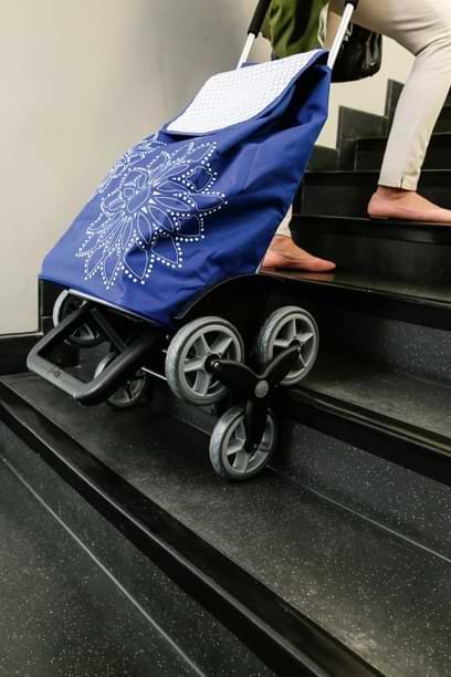 chariot courses monte escalier