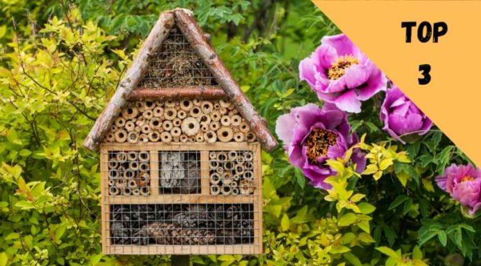 hôtel à insectes cabane maison