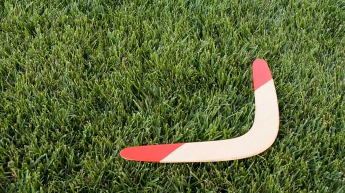 boomerang bois