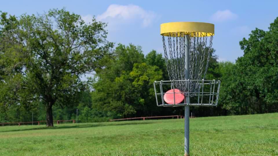 disc golf panier