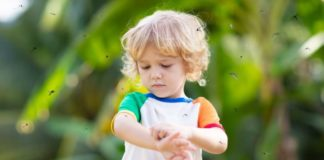 stylo chauffant piqure insecte démangeaison